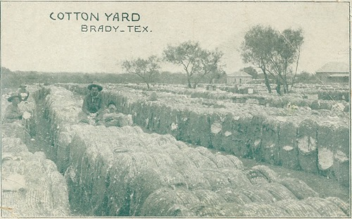 Cotton Yard, Brady, Texas