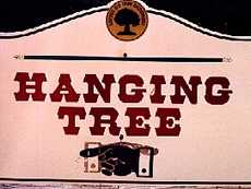 Coldspring Texas hanging tree sign