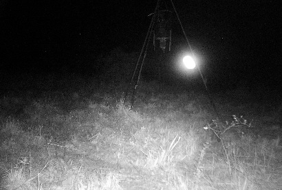 Ghost Light caught on game amera
