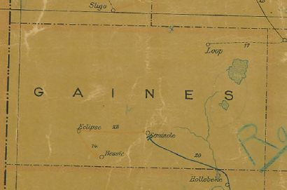Gaines County TX vintage map