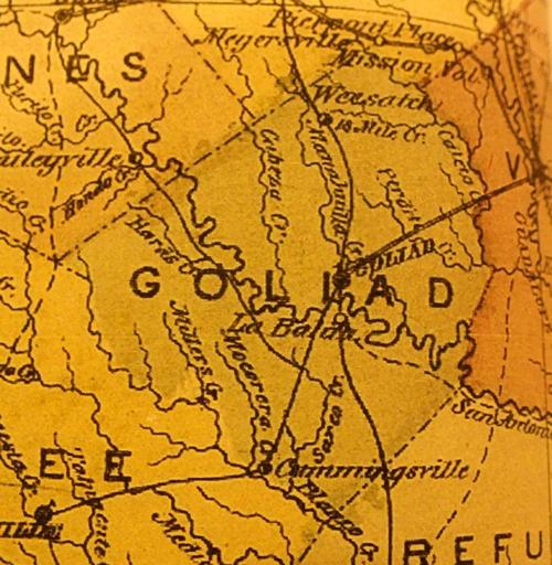 TX Goliad County 1874Map