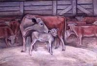 Cow and calf, Lampasas Texas post office mural