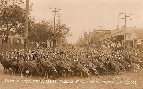 First Turkey Trot, Cuero, Texas  1912 photo