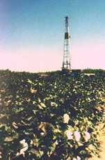 Oil well in a cotton field, Texas image